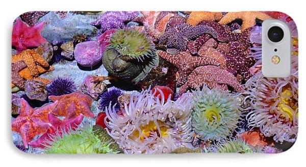 Pacific Ocean Reef IPhone Case by Kyle Hanson