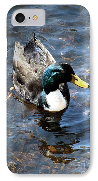 Paddling Peacefully IPhone Case by RC DeWinter