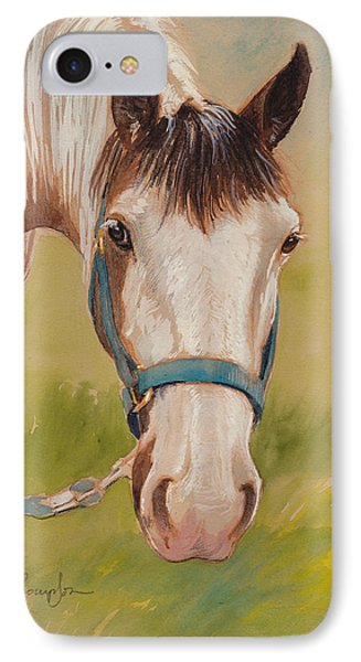 Paint Horse Pause IPhone Case