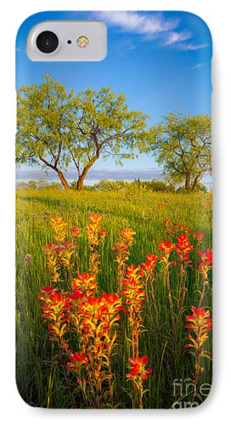 Paintbrush On Fire IPhone Case