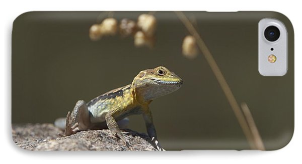 IPhone Case featuring the photograph Painted Dragon by Bill Robinson