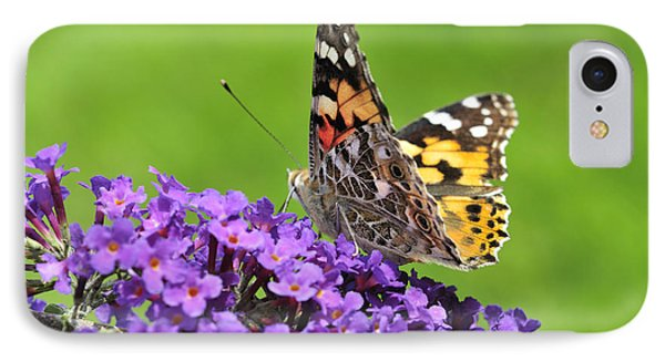 Painted Lady Butterfly On A Buddleia Phone Case by Andy Smy