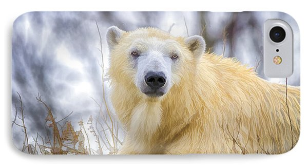 Painted Polar Bear  Phone Case by LeeAnn McLaneGoetz McLaneGoetzStudioLLCcom