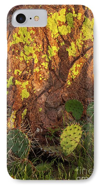 Painted Rock Phone Case by Iris Greenwell