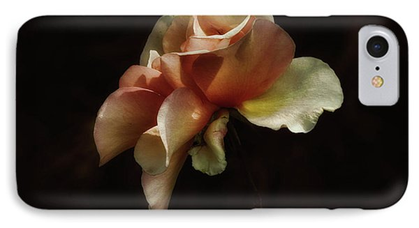 Painted Roses IPhone Case by Elaine Malott