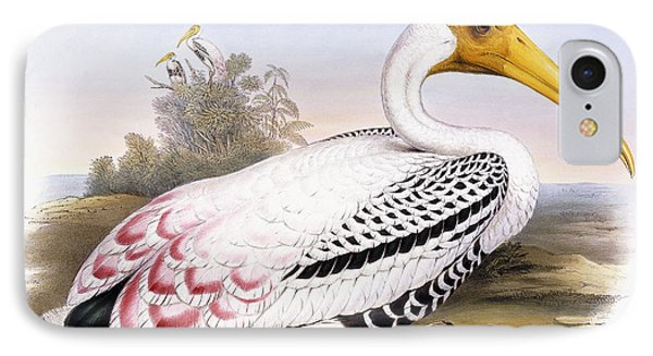Painted Stork IPhone Case by John Gould