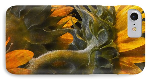 Painted Sun Flowers IPhone Case by John Rivera