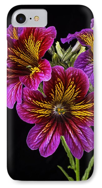 Painted Tongue Flowers IPhone Case