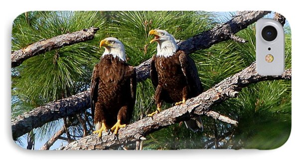 Pair Of American Bald Eagle IPhone Case by Barbara Bowen