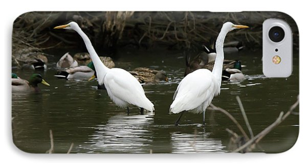 IPhone Case featuring the photograph Pair Of Egrets by George Randy Bass