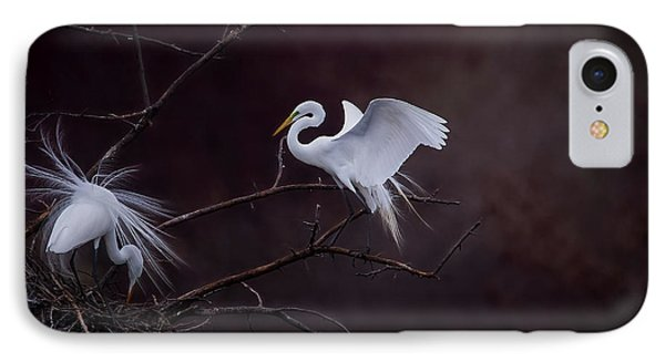 Pair Of Egrets IPhone Case by Kelly Marquardt