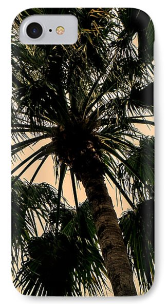 Palm Against The Sky IPhone Case by Frank Mari