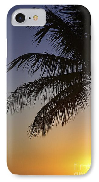 Palm At Sunset Phone Case by Brandon Tabiolo - Printscapes