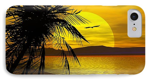 Palm Beach IPhone Case by Robert Orinski