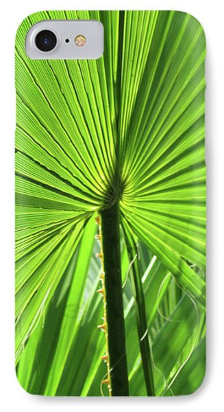Palm Frond IPhone Case by Bonnie Muir
