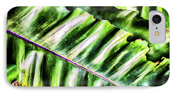 Palm Fronds Up Close IPhone Case