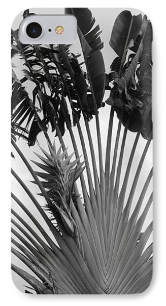 Palm Frons Phone Case by Rob Hans
