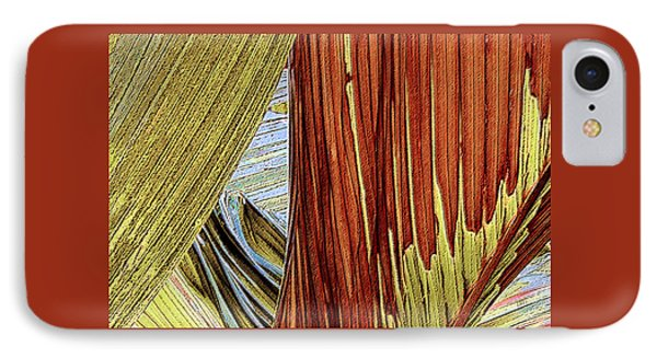 IPhone Case featuring the photograph Palm Leaf Abstract by Ben and Raisa Gertsberg