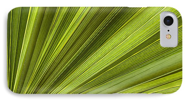 Palm Leaf Abstract IPhone Case by Elena Elisseeva