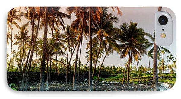 Palm Pathway IPhone Case