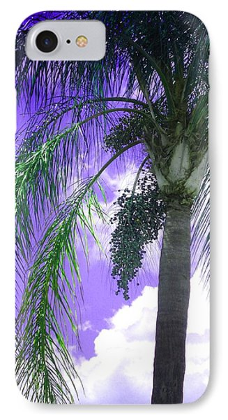 Palm Tree Seeding IPhone Case by Rosalie Scanlon