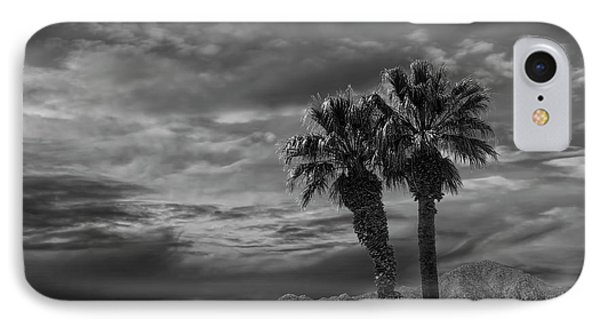 IPhone Case featuring the photograph Palm Trees By Borrego Springs In Black And White by Randall Nyhof