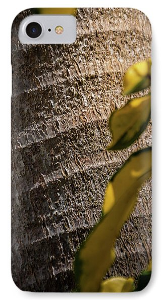 Palm Trunk - Miami IPhone Case by Frank Mari