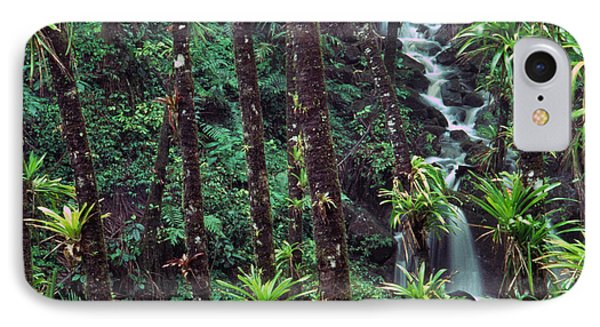 Palm Trunks And Waterfall El Yunque Phone Case by Thomas R Fletcher