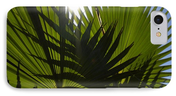 IPhone Case featuring the photograph Palmetto 3 by Renate Nadi Wesley