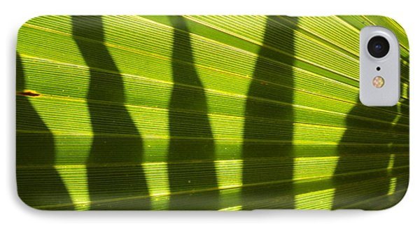 IPhone Case featuring the photograph Palmetto 4 by Renate Nadi Wesley