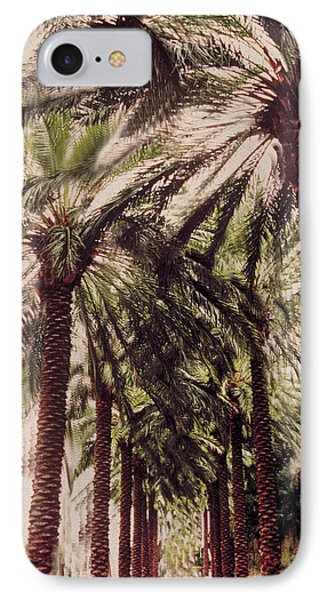 Palmtree IPhone Case by Jeanette Korab