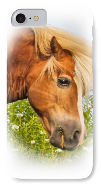 IPhone Case featuring the photograph Palomino Head by Debbie Stahre