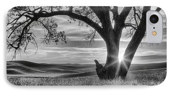Palouse Sentinel - Black And White IPhone Case