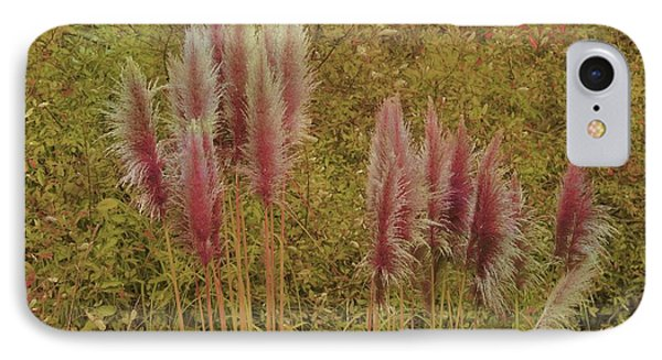 IPhone Case featuring the photograph Pampas Grass by Athala Carole Bruckner