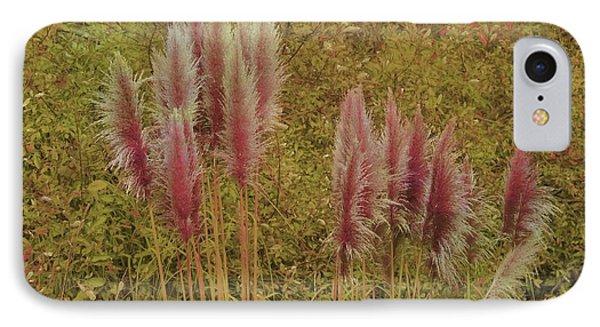 Pampas Grass IPhone Case