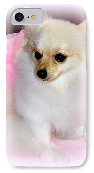 Pampered Pomeranian  IPhone Case