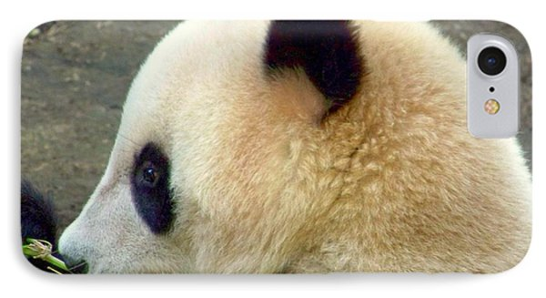 Panda Snack Phone Case by Karen Wiles