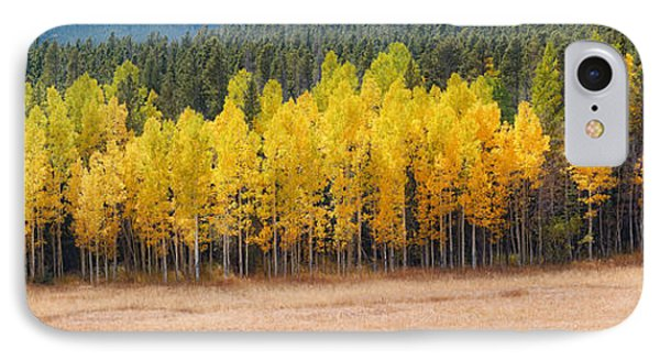 Panorama Of Aspen Grove Fall Foliage Peak To Peak Highway - Rocky Mountains Colorado State IPhone Case by Silvio Ligutti