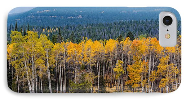 Panorama Of Changing Aspens At Rocky Mountain National Park - Estes Park Colorado IPhone Case