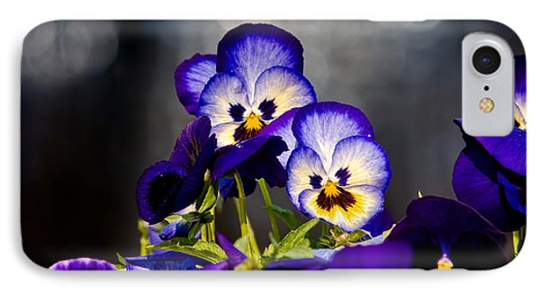 Pansies Phone Case by Christopher Holmes