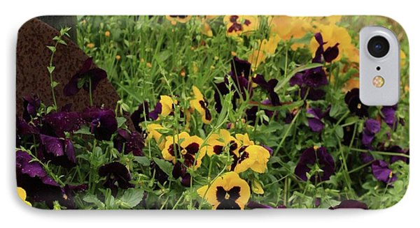 IPhone Case featuring the photograph Pansies by Kim Henderson