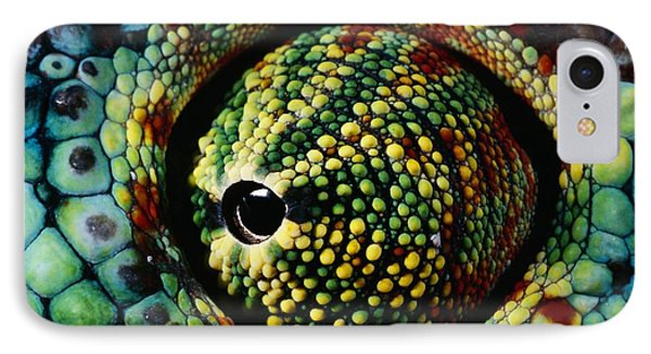 Panther Chameleon Eye Phone Case by Daniel Heuclin and Photo Researchers