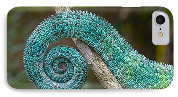 Panther Chameleon Tail Phone Case by Philippe Psaila and Photo Researchers