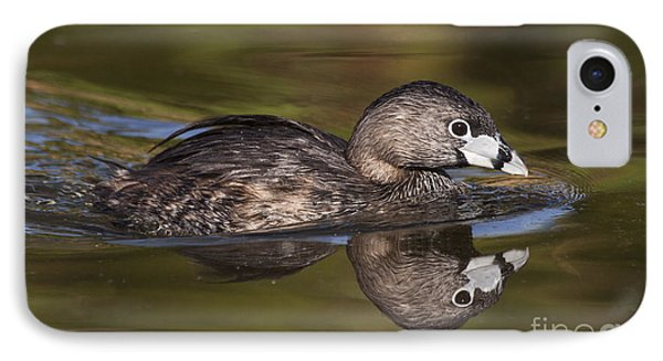 Papago Park Grebe IPhone Case by Ruth Jolly