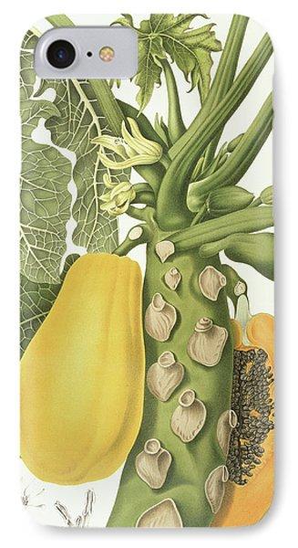 Papaya IPhone Case by Berthe Hoola van Nooten