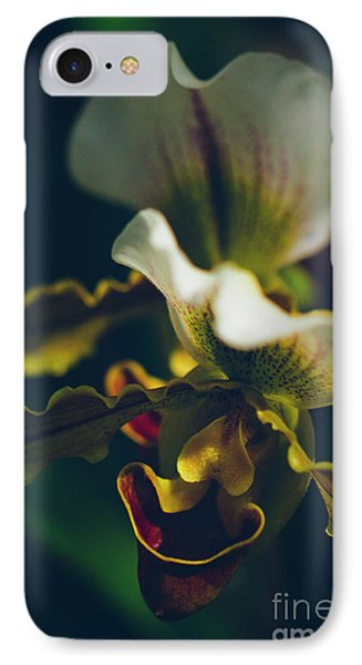 IPhone Case featuring the photograph Paphiopedilum Villosum Orchid Lady Slipper by Sharon Mau