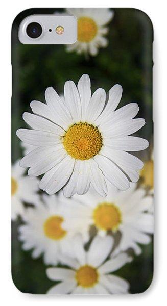 Paquerette IPhone Case