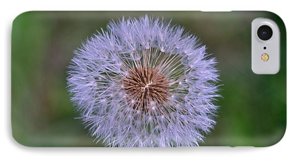 Parachute Club- Dandelion Gone To Seed IPhone Case by David Porteus