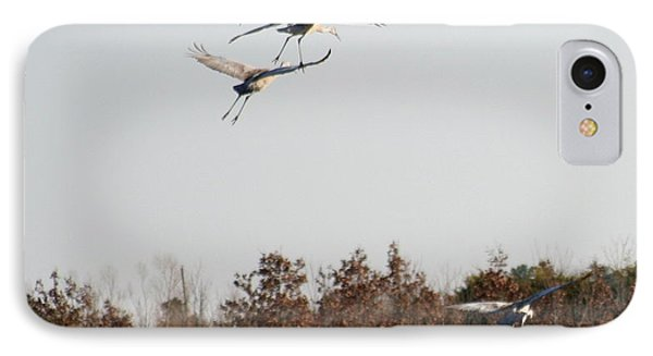 IPhone Case featuring the photograph Parachuting Cranes by Diane Merkle