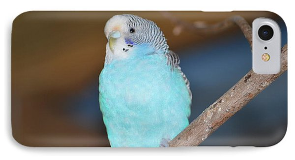 Parakeet Phone Case by Linda Geiger